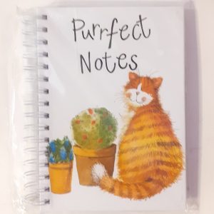 quaderno-quadernino-anelle-spirale-appunti-notebook-notes-happy-shop-alex-clark-gattini-gattino-cat-cats-gatto-gatti-sj01