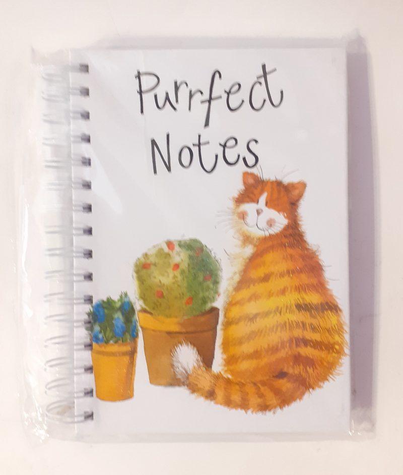 quaderno-quadernino-anelle-spirale-appunti-notebook-notes-happy-shop-alex-clark-gattini-gattino-cat-cats-gatto-gatti-sj01