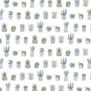 Carte Scrap Cactus